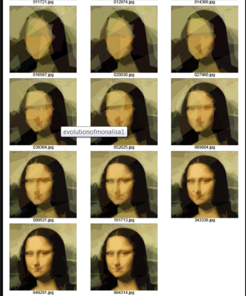 Genetic Programming- Evolution of Mona Lisa - 4