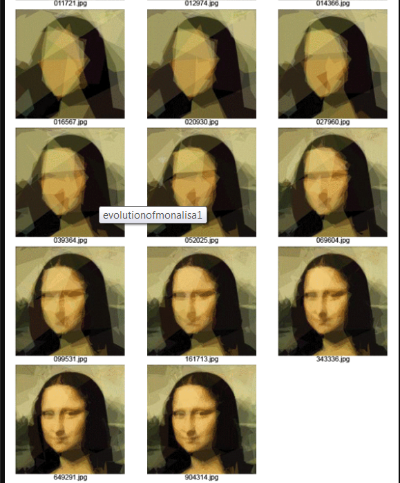 Genetic Programming- Evolution of Mona Lisa - 4