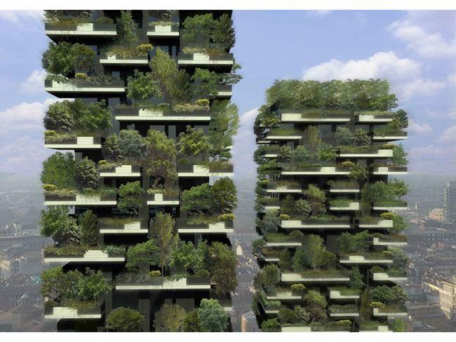 treehouse citiesjpg