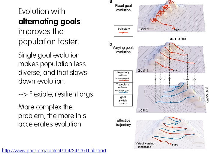 shift the goal on a fitness landscape accelerates evolution