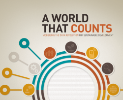 A world that counts - UNGlobalPulse