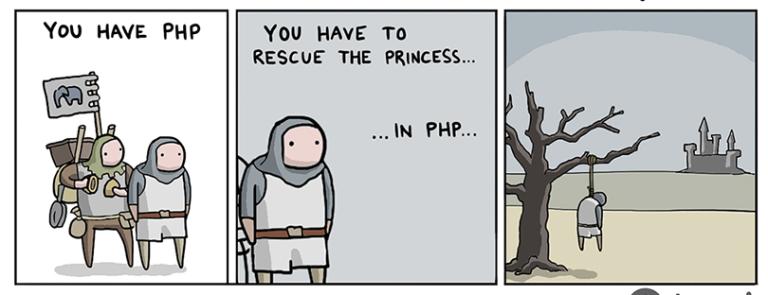 rescue_princess_php